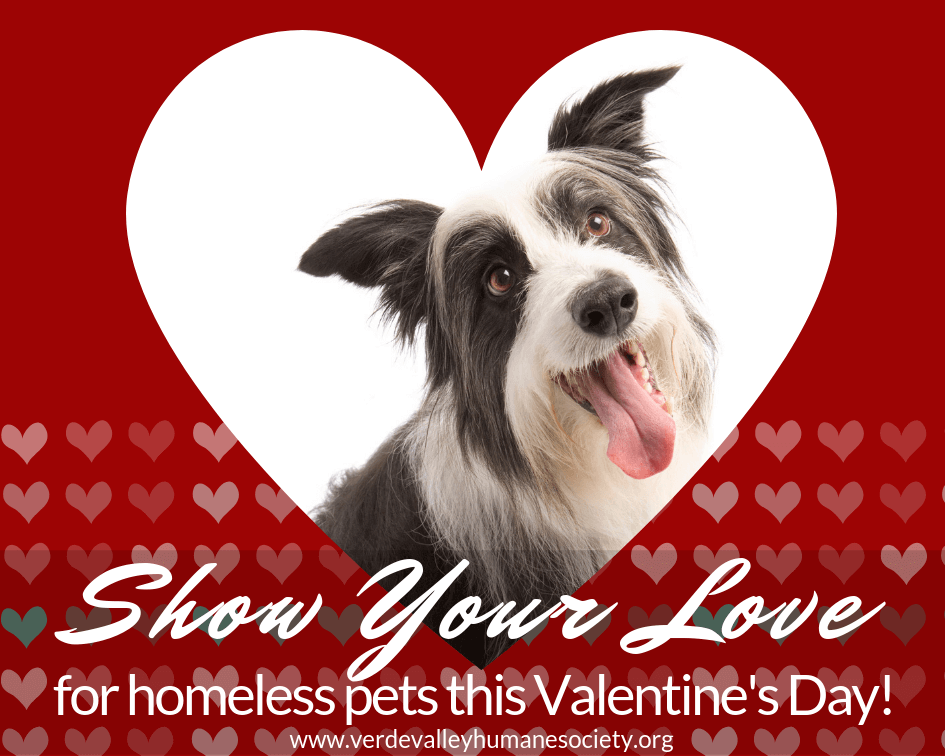 Show your love today!